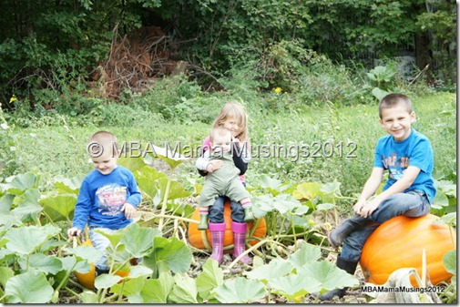 Kids in Pumpkin Patch Funny